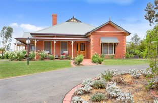 Picture of 24 Kathleen Terrace, Maiden Gully VIC 3551