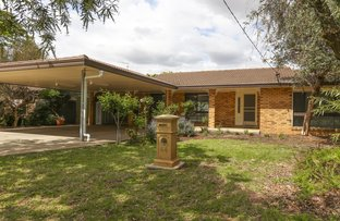 Picture of 44 Merrigal Street, Griffith NSW 2680