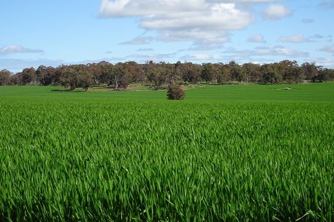 Picture of Cooraminning Rd, DUMBERNING WA 6312