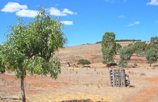 Picture of A208 Commercial Road, Burra SA 5417