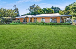 Picture of 146 Teutoberg Ave, Witta QLD 4552