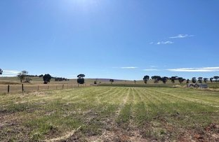 Picture of Lot 16 & 31 Dublin Street, Jamestown SA 5491
