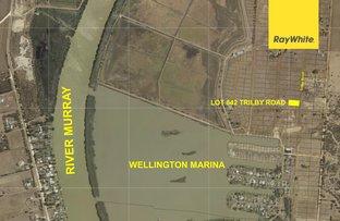 Lot 842 Trilby Road, Wellington East SA 5259