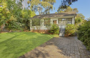 Picture of 11 Lanai  Place, Beacon Hill NSW 2100