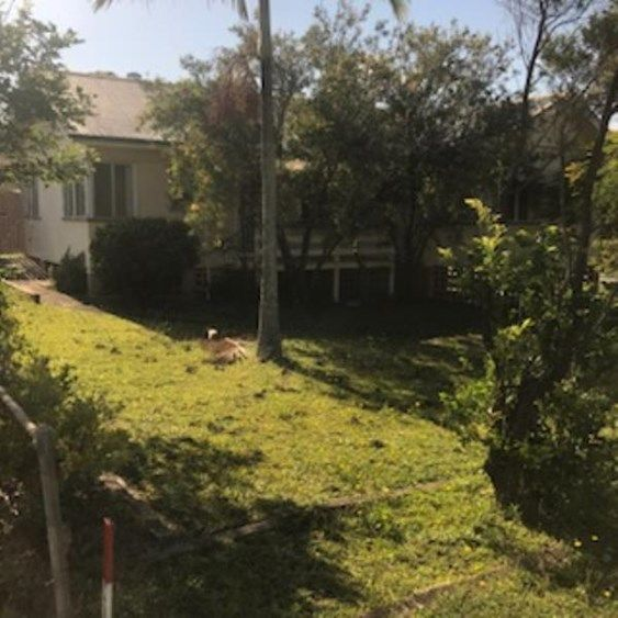 24 Telopia Ave, Wavell Heights QLD 4012, Image 8