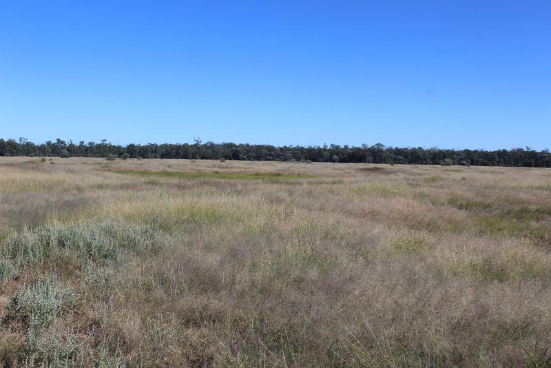 """ Murrisk"", Goondiwindi QLD 4390, Image 2"
