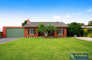 Picture of 13 Panorama Road, Evanston Park SA 5116