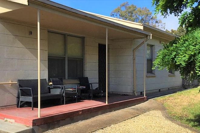 Picture of 8 GUERNSEY STREET, NARACOORTE SA 5271