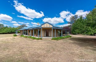 Picture of 17 Megan Court, Wangaratta VIC 3677