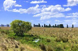 Picture of 5625 Kings Highway, Braidwood NSW 2622