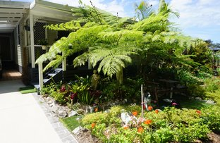 Picture of 130 Rosewood Drive, Valla Beach NSW 2448