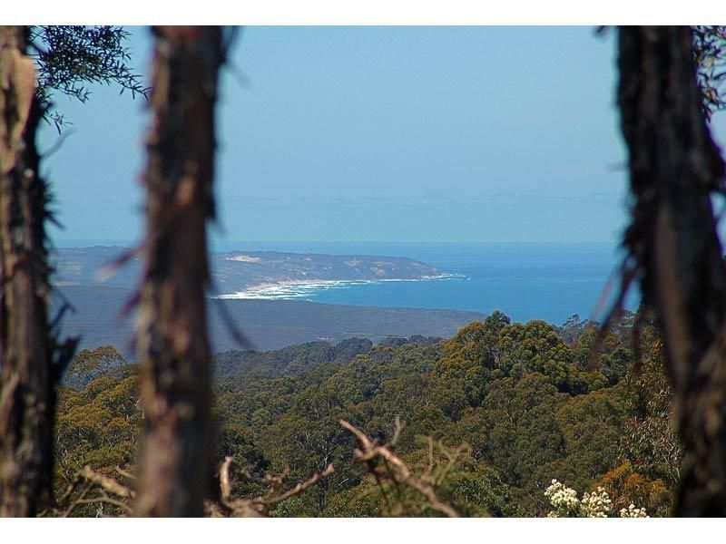 5470 Great Ocean Road, YUULONG VIC 3237, Image 2