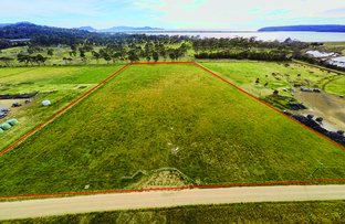 Picture of Lot 1/425 Bay Road, Boomer Bay TAS 7177