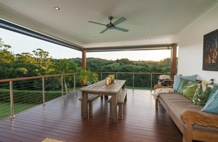 Picture of 35 Booyong, Black Mountain QLD 4563