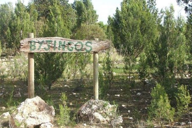 Picture of 648 Goondooloo Road, BOWHILL SA 5238