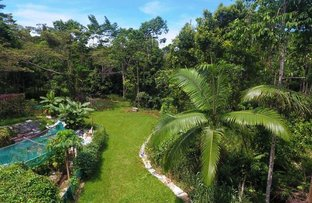 Picture of 100 Ironbark Road, Daintree QLD 4873