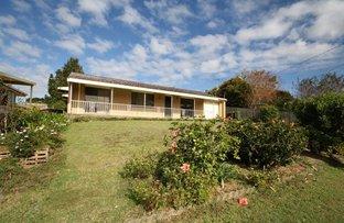 Picture of 23 Tamarisk Avenue, Murwillumbah NSW 2484
