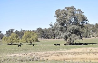 Picture of ADELARGO ROAD, Grenfell NSW 2810