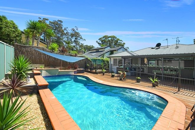 Picture of 3 Julie Street, BERKELEY VALE NSW 2261