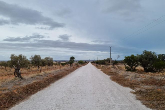 Picture of Lot 239 Olive Grove Road, NAPPERBY SA 5540