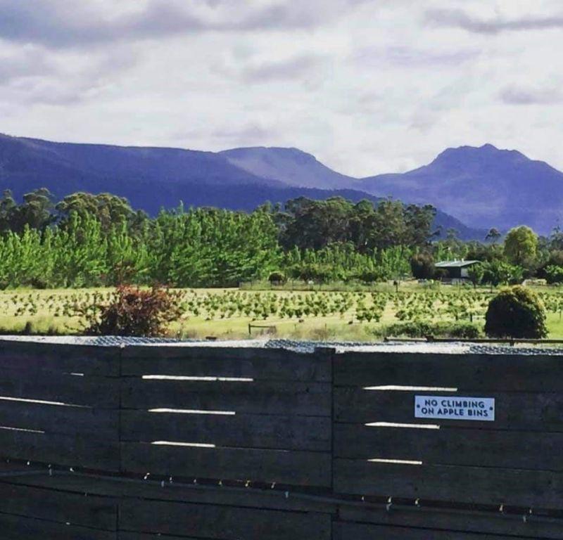 Lot 1 71 Mountain River Road, Grove TAS 7109, Image 2