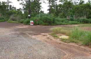 Picture of 117,  121,  125 Eucalyptus, Herbert NT 0836