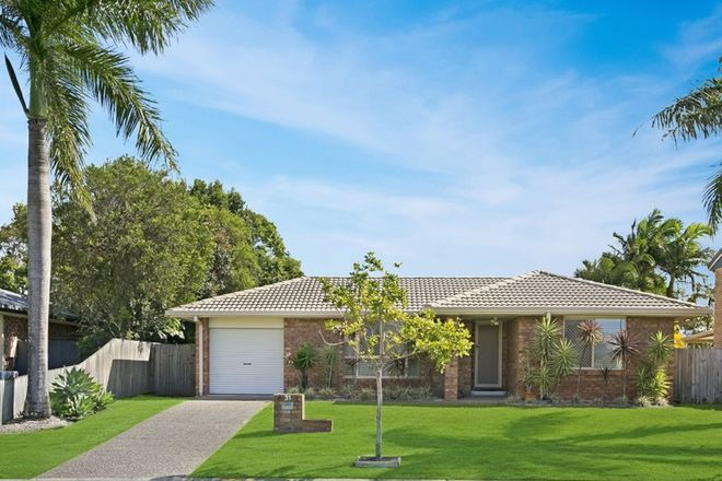 Picture of 31 Harrier Drive, BURLEIGH WATERS QLD 4220