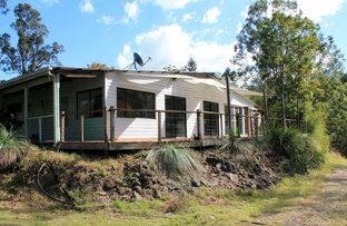 Picture of 1560 Gradys Creek Road - Cougal, Kyogle NSW 2474