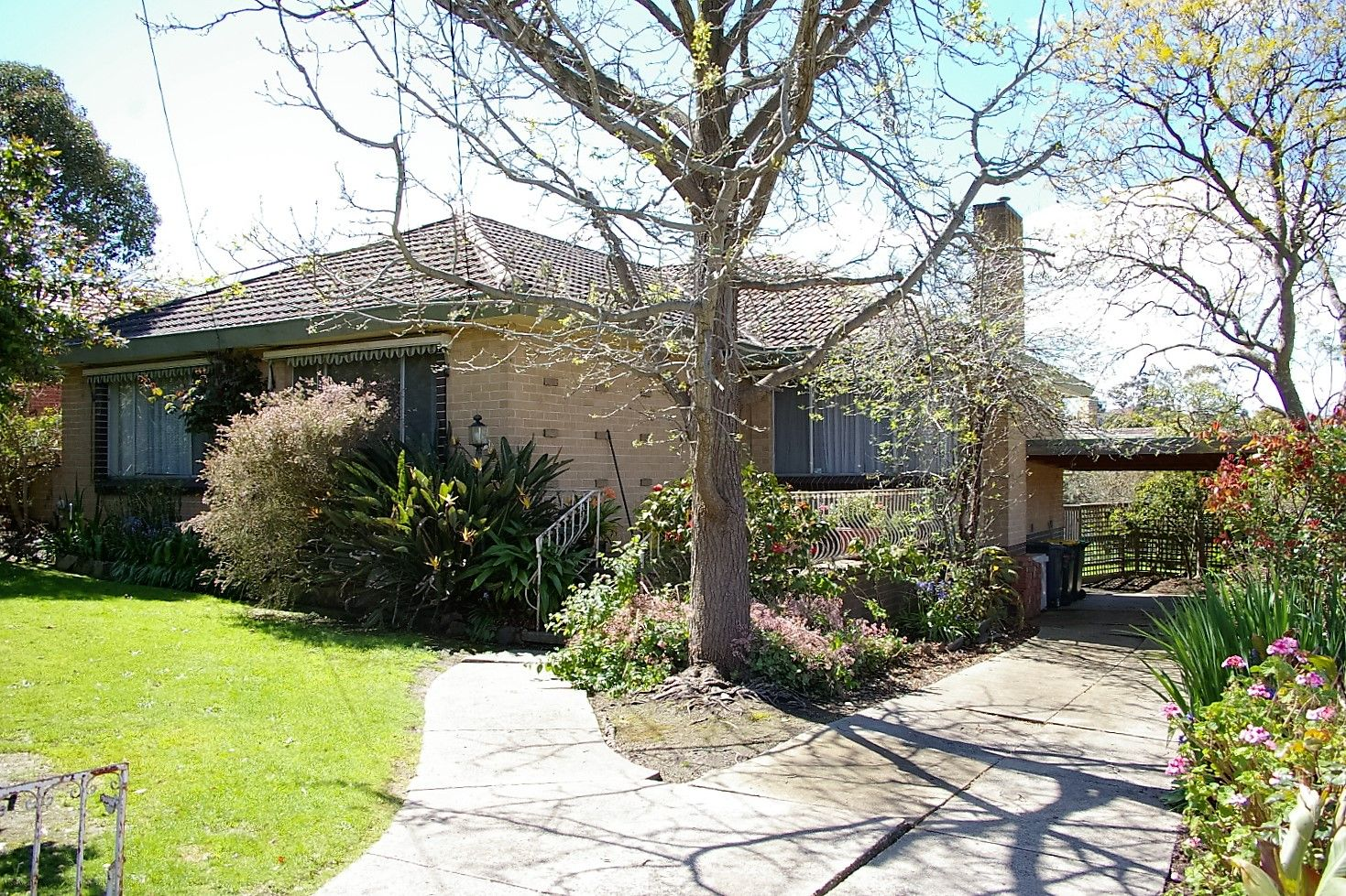 153 Ayr St, Doncaster VIC 3108, Image 1