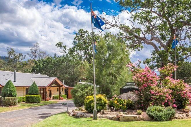 Picture of 1017 Bluff River Road, TENTERFIELD NSW 2372