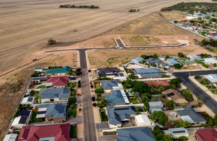 Picture of Lots 4-96 Eime Drive, Loxton SA 5333