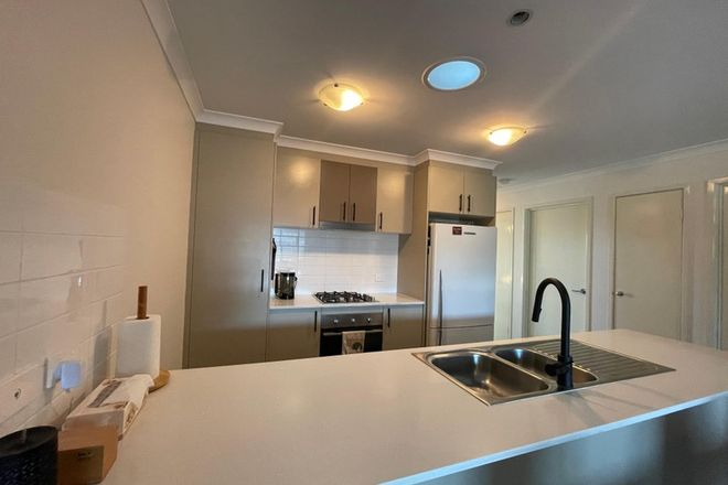Picture of 12/11 Starcevich Crescent, JACKA ACT 2914