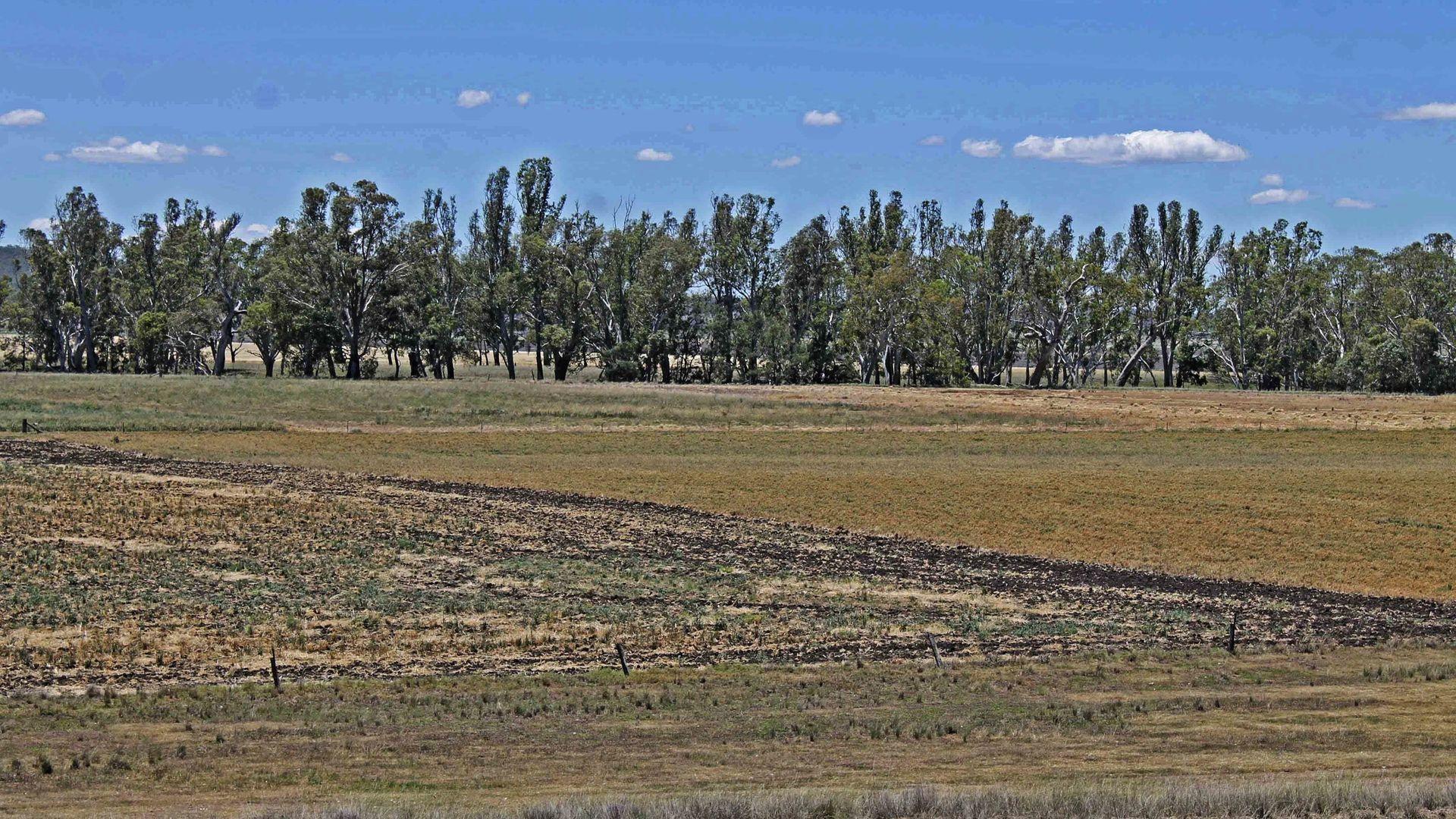 4117 Leyburn-Cunningham Rd, Wheatvale QLD 4370, Image 1