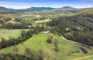 Picture of 549 Allgomera Road, Allgomera NSW 2441