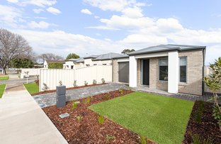 Picture of 14 CAIRNS AVENUE, Warradale SA 5046