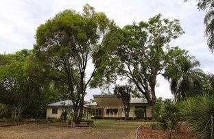 Picture of 97 Callandoon Street, Goondiwindi QLD 4390