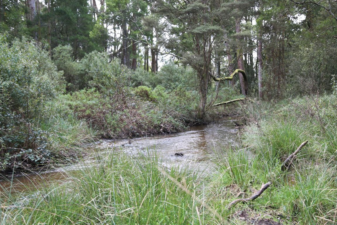 4, 32 Twin Creeks Road, Mengha TAS 7330, Image 2