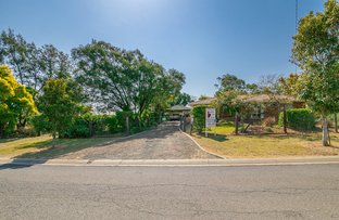3 Flame Tree Court, Walloon QLD 4306
