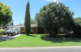 Picture of 12 Allambie Place, Moree NSW 2400
