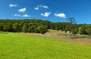 Picture of Lot 1/237 Paynters Creek Road, Rosemount QLD 4560