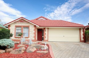 Picture of 12 Riley Street, Holden Hill SA 5088