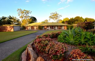 Picture of 78 Birdsville St, Greenbank QLD 4124