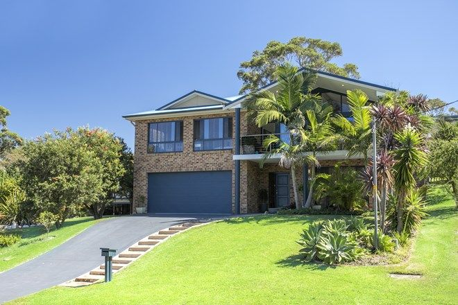 Picture of 53 Carroll Avenue, MOLLYMOOK BEACH NSW 2539