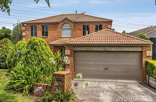 Picture of 7 Belinda Court, Bentleigh East VIC 3165