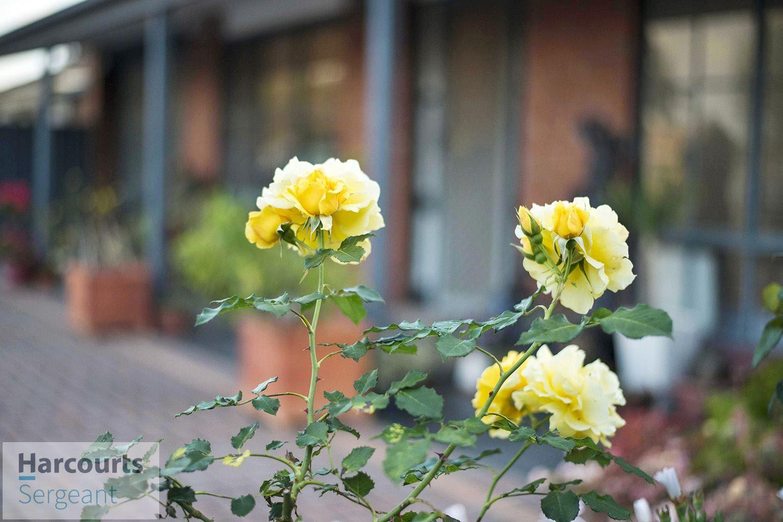 3 Gurney Street, Parafield Gardens SA 5107, Image 1
