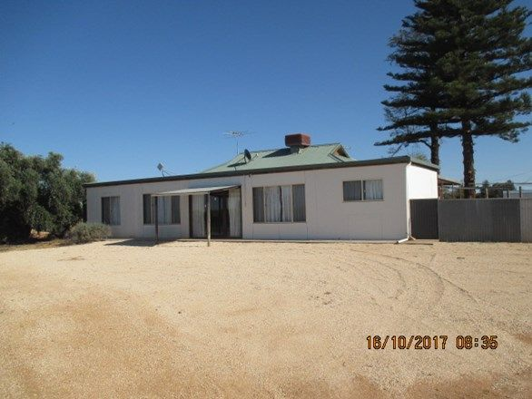 62 Renfrey Road, Barmera SA 5345, Image 0