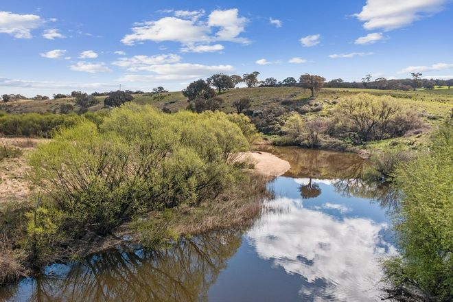 """Picture of """"Ballycastle"""" 40 Tully Lane, MUMMEL NSW 2580"""