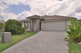 Picture of 42 Pendragon Street, Raceview QLD 4305