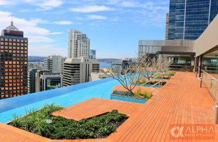 Picture of 116/211 PACIFIC HIGHWAY, North Sydney NSW 2060