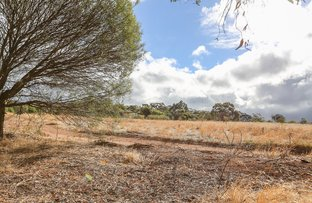 Picture of 126 Folewood Road, Toodyay WA 6566